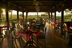 Last sunlight on 2011 (juliaclairejackson) Tags: sunset sunlight restaurant chair asia warm glow shadows chairs malaysia tables newyearseve tropical langkawi bontonresort namrestaurant
