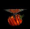 Tomato Gate TG-1 (bgspix) Tags: cactus vegetables fruit canon diy interesting flash fishtank splash 100mmf28 strobist 60d speelite yongnuo benjamings sundayphotography bgsphotography bgspix