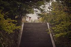 (STAIRS) Green Kyoto 2/5 (Alberto Sen (www.albertosen.es)) Tags: verde green japan nikon kyoto alberto kioto japon sen d300s albertorg albertosen