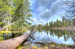 Lassen Volcanic National Park (Daniel J. Mueller) Tags: california park usa lake reflection tree clouds forrest national volcanic hdr lassen lassenvolcanicnationalpark 7xp d3s