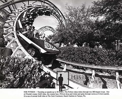 """Busch Gardens Tampa Python • <a style=""""font-size:0.8em;"""" href=""""http://www.flickr.com/photos/56515162@N02/6870762317/"""" target=""""_blank"""">View on Flickr</a>"""