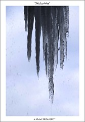 Stalactites (Michel Seguret Thanks all for 8.300 000 views) Tags: winter france cold ice nature sex season nikon hiver natur natura invierno d200 kalt eis inverno froid frio hielo glace temporada smrgsbord saison aveyron stagione dragongoldaward michelseguret