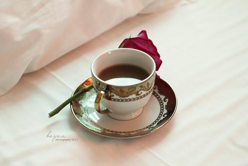 ♥ صباح الحب