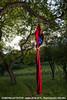 "[Création] Langue des Bois - Cie Huppée / Eguisheim / 13.06.10 • <a style=""font-size:0.8em;"" href=""http://www.flickr.com/photos/30248136@N08/6890995227/"" target=""_blank"">View on Flickr</a>"