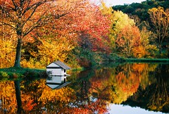 0378521-R1-031-14_2 (novasdtr) Tags: autumn trees color reflection fall colors leaves season colorful awesome herbst seasonal change ponds waterreflections jesień changingleaves goldenheart blueribbonwinner herbstfarben greatnature greatphotographers thegalaxy frameit seasonalchanges mywinners abigfave platinumphoto treesreflectedinwater colourartaward theperfectphotographer flickrlovers goldenheartaward dragonsdanger uniqueaward mbpictures mostbeautifulpictures platinumpeaceaward greaterphotographers allnaturesparadise frameitlevel3 frameitlevel2 frameitlevel4 frameitlevel5 frameitlevel6 frameitlevel7