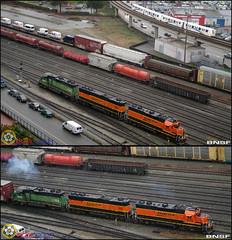 BNSF (BCOL CCCP) Tags: santa railroad canada burlington train bc railway fe northern skytrain translink newwestminster cccp mkii bcol