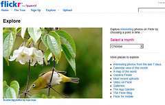 Scattering pollen on Explore front page (myu-myu) Tags: explore explorefrontpage