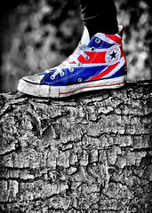Converse All Star. Union Jack. The Who. (CWhatPhotos) Tags: pictures camera blue red white colour tree feet field digital canon pose that stars jack boot eos star photo all foto dof legs image boots photos who flag union picture images 100mm canvas have bark fotos converse 7d chuck colourful dslr which depth allstar chucks f28 allstars contain selective canvasshoes cwhatphotos