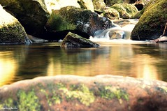 Slow Mo (Antony Archer) Tags: longexposure winter blur cold green wet water river stream flat yorkshire smooth slowshutterspeed