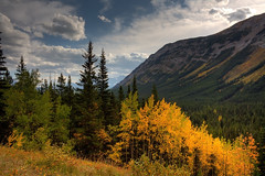 Kissed by fall (JoLoLog) Tags: trees orange canada mountains fall yellow clouds fallcolors joe alberta rockymountains hdr kananaskiscountry canadianrockies highway40 canonxsi mygearandme mygearandmepremium mygearandmebronze mygearandmesilver mygearandmegold mygearandmeplatinum mygearandmediamond