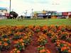 Praça Ciro Lisita no setor Coimbra - Goiânia, Goiás, Brasil (Alan Bailão ⎝⏠⏝⏠⎠) Tags: jardim praça coimbra goiânia ciro setor flôres lisita