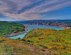 panorama view of st john's newfoundland (Rex Montalban Photography) Tags: panorama newfoundland stjohns stitched hdr photomatix rexmontalbanphotography theviewfromsignalhill pse9 photoshopelements9