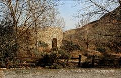 Windwolves Perserve (RedHatGal: Barbara Butler/FireCreek Photography) Tags: hiking hills wildflowers tuleelk wildlands ranchland windwolvespreserve redhatgal kerncountyphotographers firecreekphotography kernphotographyassociation barbarabutlerphotography consverancy