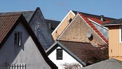 Eight roofs - IMG_1529ab (Ablume - back on naturewatch) Tags: copyright springtime fures farum elitephotography dazzlingshots alfblumehotmailcom funfanphotos