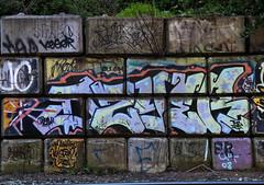 Dzyer (You can call me Sir.) Tags: california graffiti bay east bayarea northern dzyer mtwl