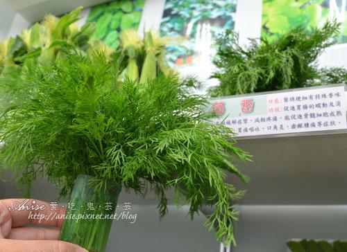 辣滷哇蔬菜森林014.jpg