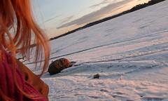 Seurasaari (ccr_358) Tags: wood trees light sunset sea sky white snow cold ice suomi finland hair island evening march helsinki travels tramonto afternoon helsingfors openairmuseum 2012 finlandia seurasaari republicoffinland ccr358