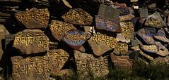 DSC_1154cCR5 (EmmySchoorl) Tags: wall stones praying mani tibet kham himalaya sichuan prayers himalayawander