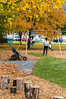 _DSC4817.jpg (bristolcorevt) Tags: playground bristol vermont outdoor swings structure treehouse bristolvt towngreen