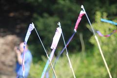 La Hulpe - Prenez l air (8) (Patrick Williot) Tags: la air fete chateau brabant domaine cerfs volants wallon solvay hulpe