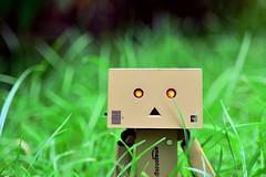 Danbo Lost in the grass (RolandHut) Tags: macro cute green grass closeup garden toy lost outside toys outdoors japanese nikon outdoor help kawaii danbo d5100 nikond5100
