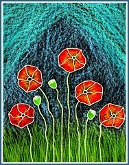 Poppy Chorale B (traqair57) Tags: poppy poppies poppyfield poppyprint