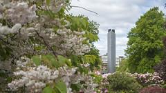 University of Glasgow District Heating System (EU-Media) Tags: city plant scotland energy university pumps glasgow basement engineering heating boilers