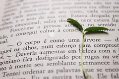 the body is like a tree (nayaracristna) Tags: plant book livro texto