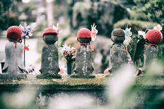Statues of unborn children  ready move safely to the afterlife. Zojoji temple, Tokyo, Japan (jev) Tags: leicam9 noctiluxm50mmf095asph 50mm amidabuddha cemetery chinzaisect jizobosatusu noctilux sanenzan shingonschool zojoji zjji afterlife architectural architecture buddhist building edifice edifices faceless japan japanesebuddhism leica leicaimages minato nocti placeofworship rangefinder religiousbuilding shiba shrine structures temple tokyo unbornchildren wwwartqcom