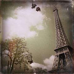 Nocturnal Paris series