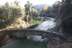 Grave's Dam (ambodavenz) Tags: new water forest river dam north masonry graves zealand otago herbert oamaru
