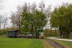 In arrivo (Antonio Martinetti) Tags: train treno balaton vlak kolej aev vonat vasut kisvasut mesztegny