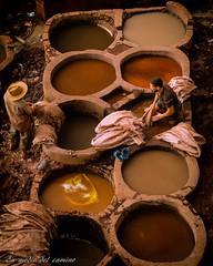 Trabajando el color / Working colours (En medio del camino) Tags: africa colours colores morocco fez dye marruecos fleamarket zoco frica teir tenerias trabajostradicionales traditionaljobs