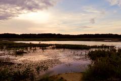 old school (tom bourdot) Tags: light sunset lake nature water clouds landscape outside mirror spring pond dusk nj gimp oldschool wetlands serene marsh nikkor forsythe refuge forsytherefuge nikond3300