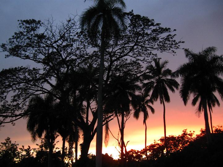 Partnervermittlungen dominikanische republik