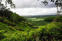 Jungle Valley (Ron Scubadiver's Wild Life) Tags: kauai hawaii tropical landscape green 20mm nikon outdoor