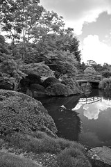 Garden vista (Deb Jones1) Tags: park travel trees bw lake reflection green nature water monochrome beauty canon reflections garden botanical pond flora australia places vista flickrduel debjones1