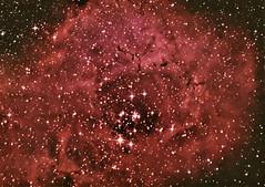 Rosette repro (BudgetAstro) Tags: nikond70 dss ngc2244 rosettenebula deepskystacker Astrometrydotnet:status=solved Astrometrydotnet:version=14400 caldwell49 caldwell50 Astrometrydotnet:id=alpha20120221316722