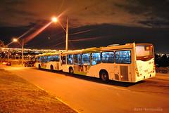 E03 | EIM Lo Ovalle - Jardín Alto (Apoyo Subus) (Transantiago Chile) Tags: chile 1855mm micros transporte marcopolo santiagodechile laflorida transantiago transportepúblico volvob7rle d3000 granviale capitaldechile subus volvob7r troncal2 subuschile hanshermosilla nikond3000 bustransantiago eimloovalle intermodalloovalle transportedechile apoyoe03 jardinalto
