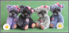 Dominique, Samantha, Maddison & Wednesday (*Sweet Days*) Tags: bear original newzealand ted cute fur ellery miniature artist teddy ooak bears mini tiny nz smokey faux synthetic sculptured maldenmills longpile ellerybears ultrausede