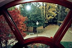 la finestra sul giardino (Preziosa 1 / Gabriella) Tags: finestra giardino antichedimore villatacchi
