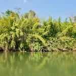 River Kwae near Sai Yok Yai waterfall, Kanchanaburi, Thailand thumbnail