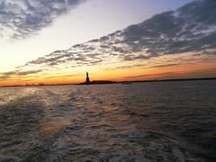 New York(971)