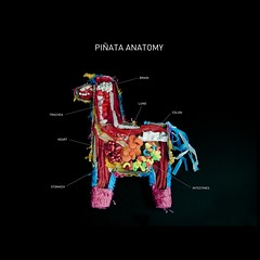 Piata Anatomy (Carmichael Lynch) Tags: candy anatomy pinata insides guts crosssection piata dissection dissected carmichaellynch carmichaelcollective
