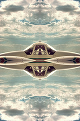 it came from innerspace. (ADIDA FALLEN ANGEL) Tags: abstract reflection art mirror israel nikon artistic flipped d40