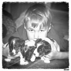 Puppy Love (Elise Arod) Tags: family blackandwhite pet blur love film dogs monochrome canon vintage puppy soft child sweet squares jr terrier memory jackrussell childphotography vintagefeel