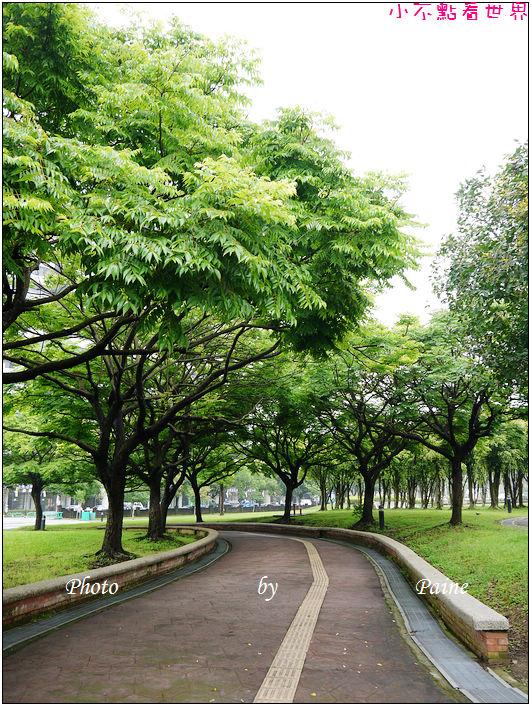 大溪埔頂公園 (27).JPG