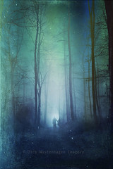 leaving (Dyrk.Wyst) Tags: blue trees light people green misty forest germany dark landscape mood cyan silhouettes eerie spooky textures emotional wuppertal iphone photoshelter