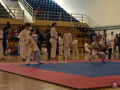 stefanou_15_5_2016_knockdown_33