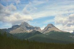(reteris) Tags: film 35mm expired banffnationalpark icefieldsparkway mjuiiiwide100 polaroidhd800